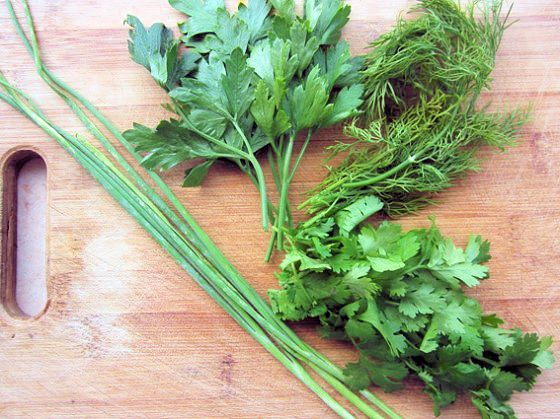 dill-coriander-parsley